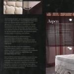 THE ASPEN  HEALTH POSTURE